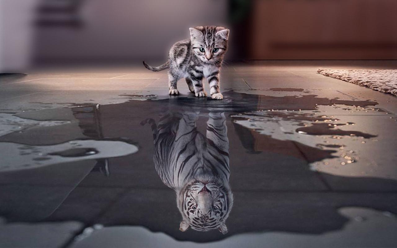 fiducia in se stessi - photo web